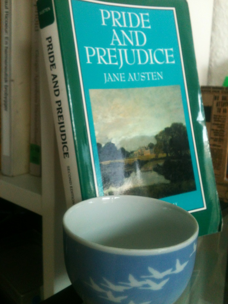 narrative voice in pride and prejudice essay Jane austen uses the following narrative techniques in her novel pride and prejudice : 1 the third person omniscient author technique: in this method of narration the author jane austen is in.